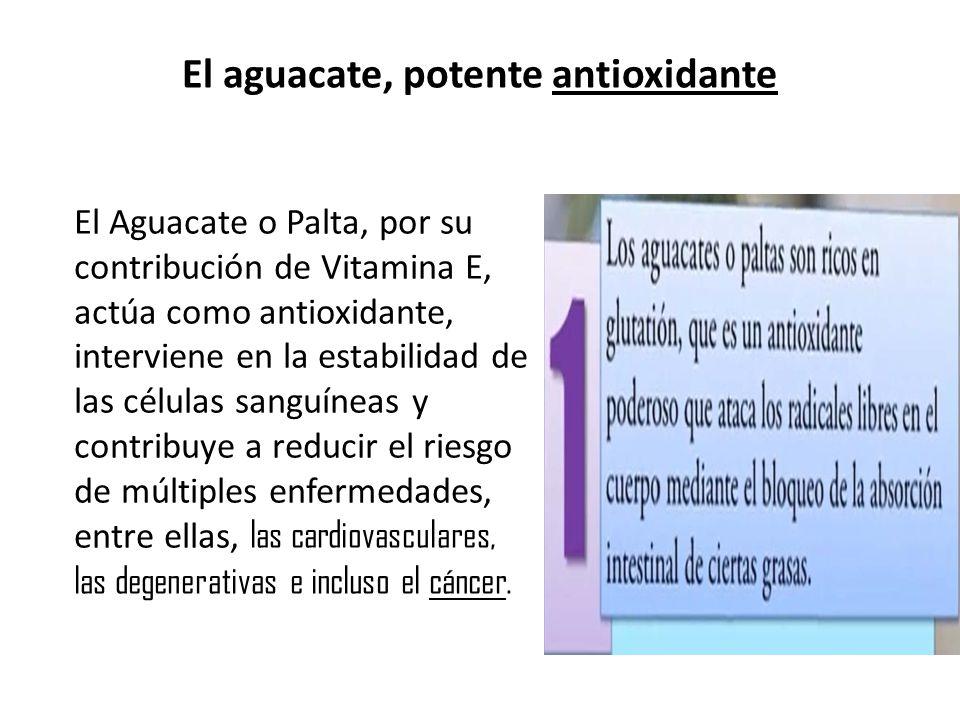 El aguacate, potente antioxidante