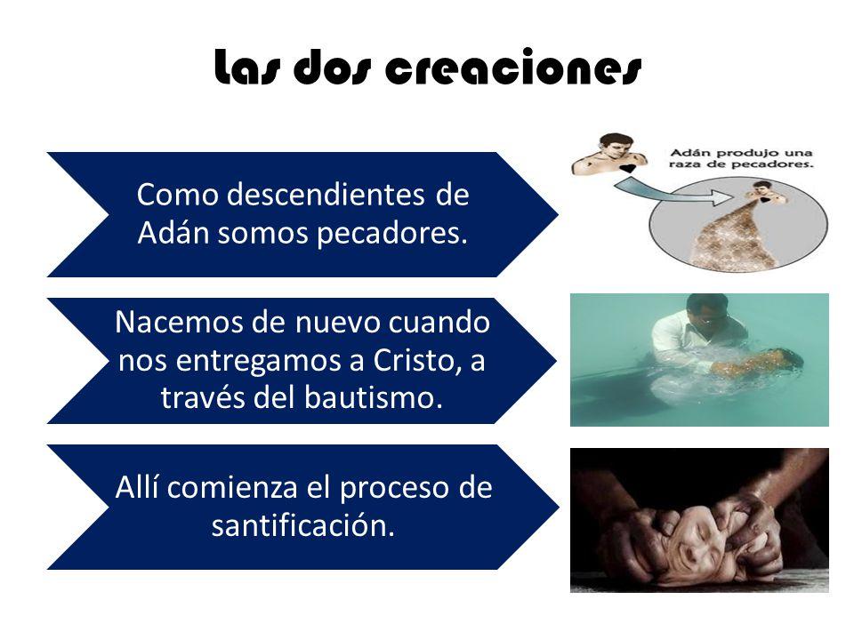 Las dos creaciones Como descendientes de Adán somos pecadores.