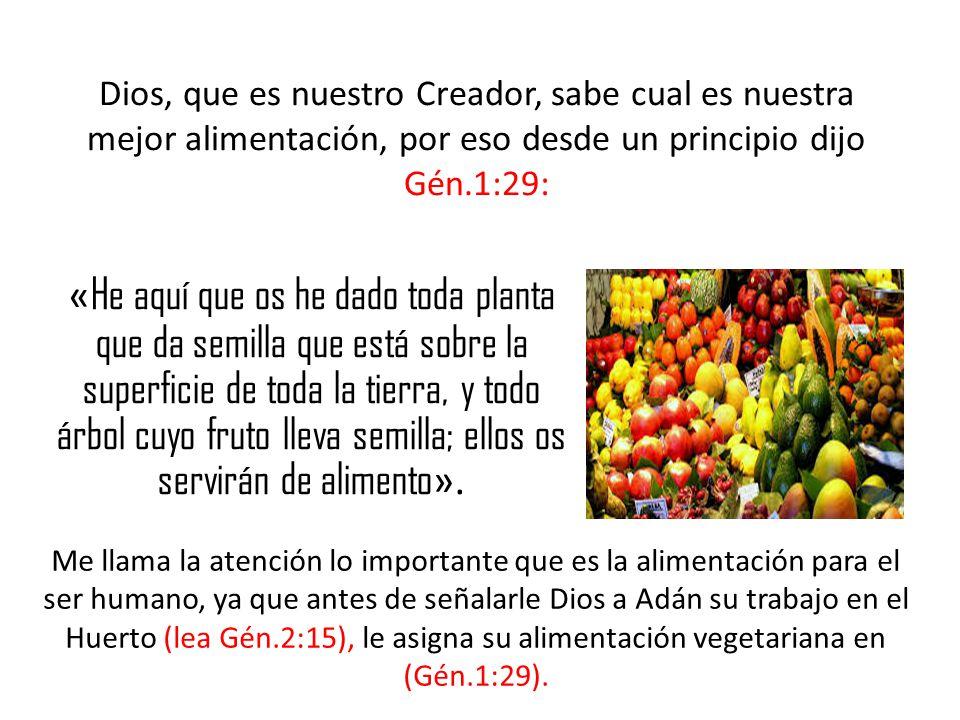 Dios, que es nuestro Creador, sabe cual es nuestra mejor alimentación, por eso desde un principio dijo Gén.1:29: