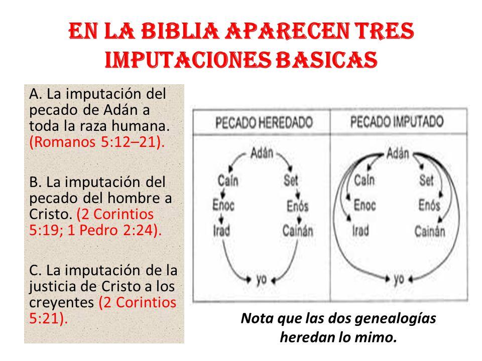 En la Biblia aparecen TRES IMPUTACIONES BASICAS