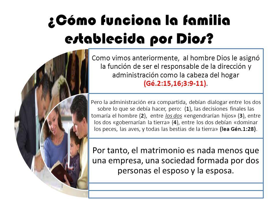 ¿Cómo funciona la familia establecida por Dios