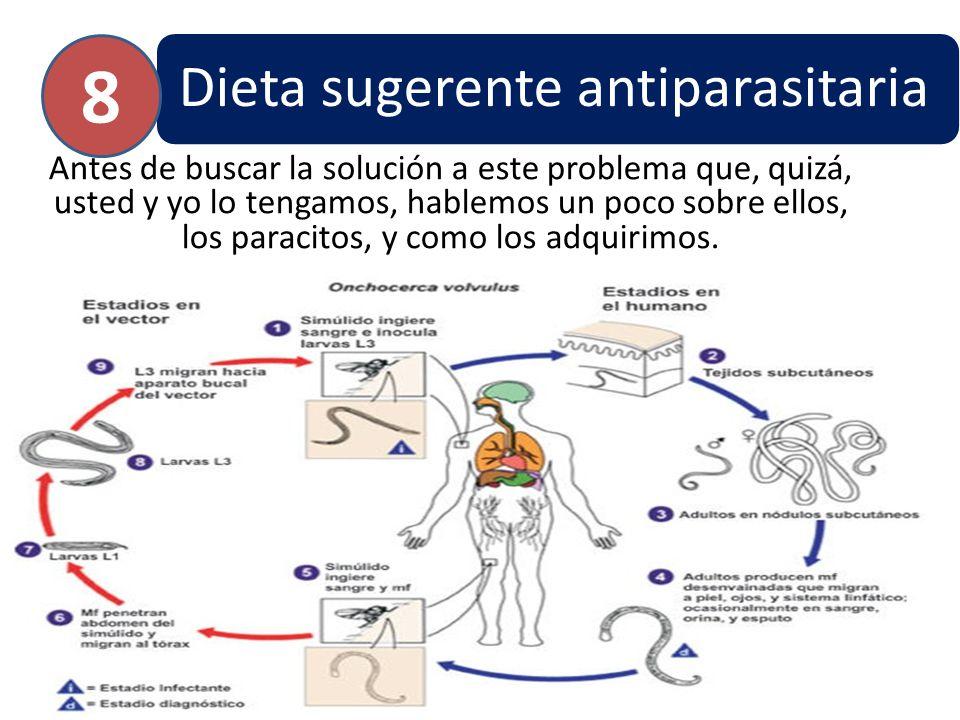 8 Dieta sugerente antiparasitaria