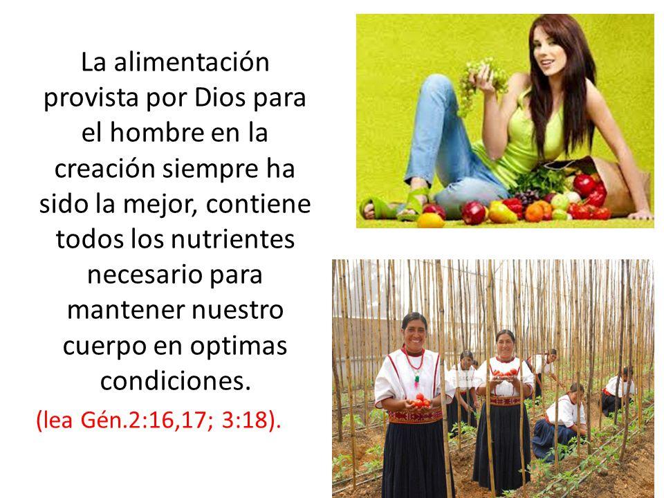 La alimentación provista por Dios para el hombre en la creación siempre ha sido la mejor, contiene todos los nutrientes necesario para mantener nuestro cuerpo en optimas condiciones.