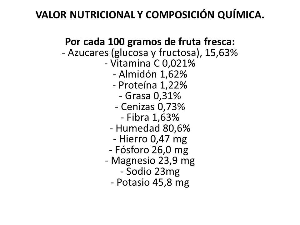 VALOR NUTRICIONAL Y COMPOSICIÓN QUÍMICA
