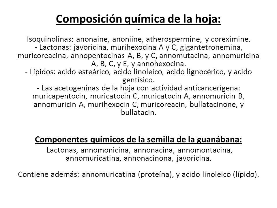 Componentes químicos de la semilla de la guanábana:
