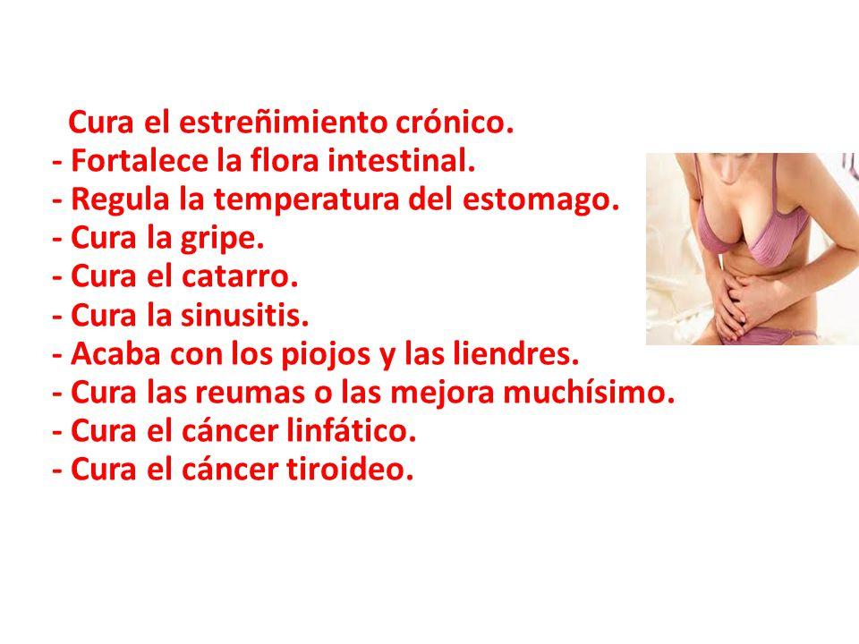 Cura el estreñimiento crónico. - Fortalece la flora intestinal