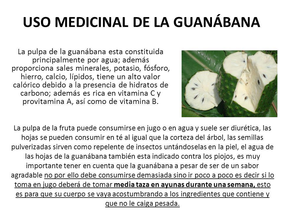USO MEDICINAL DE LA GUANÁBANA