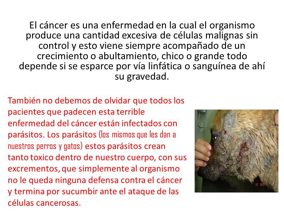 El cáncer es una enfermedad en la cual el organismo produce una cantidad excesiva de células malignas sin control y esto viene siempre acompañado de un crecimiento o abultamiento, chico o grande todo depende si se esparce por vía linfática o sanguínea de ahí su gravedad.