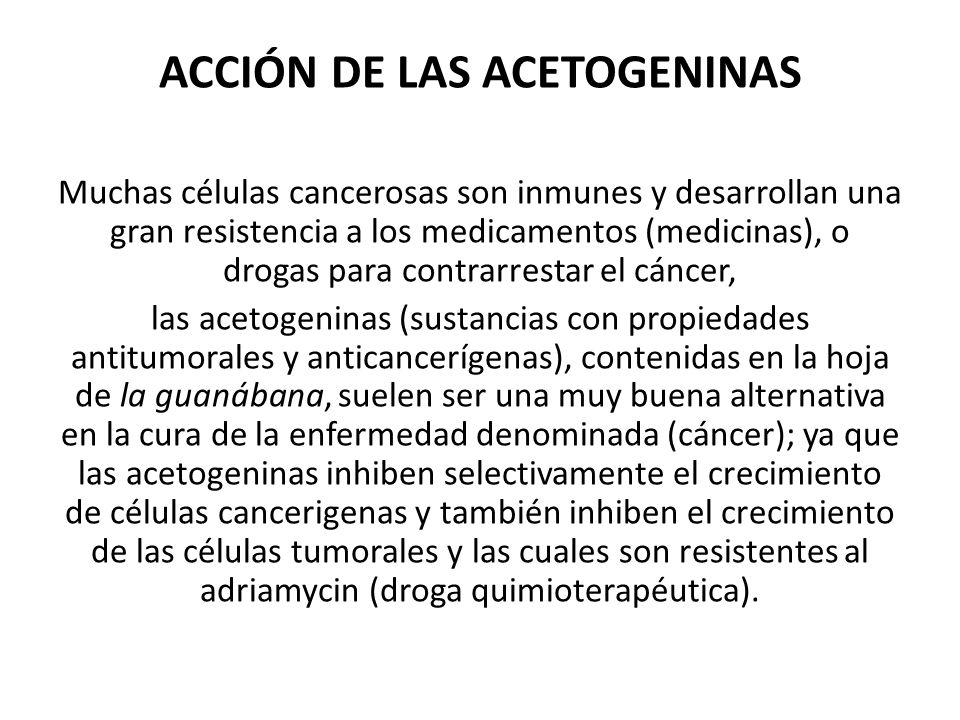 ACCIÓN DE LAS ACETOGENINAS