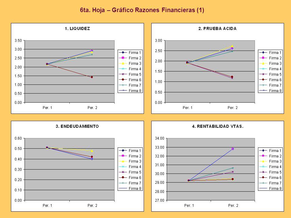 6ta. Hoja – Gráfico Razones Financieras (1)