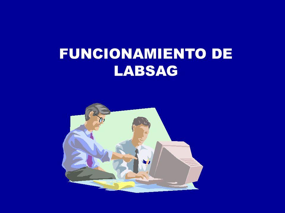 FUNCIONAMIENTO DE LABSAG