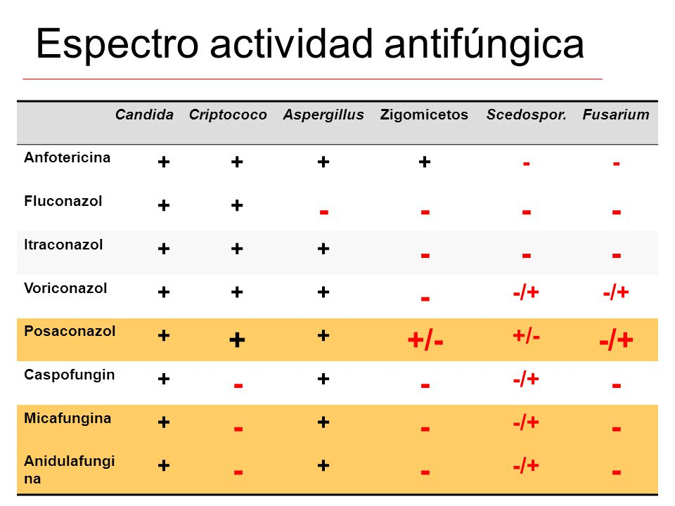 Espectro actividad antifúngica