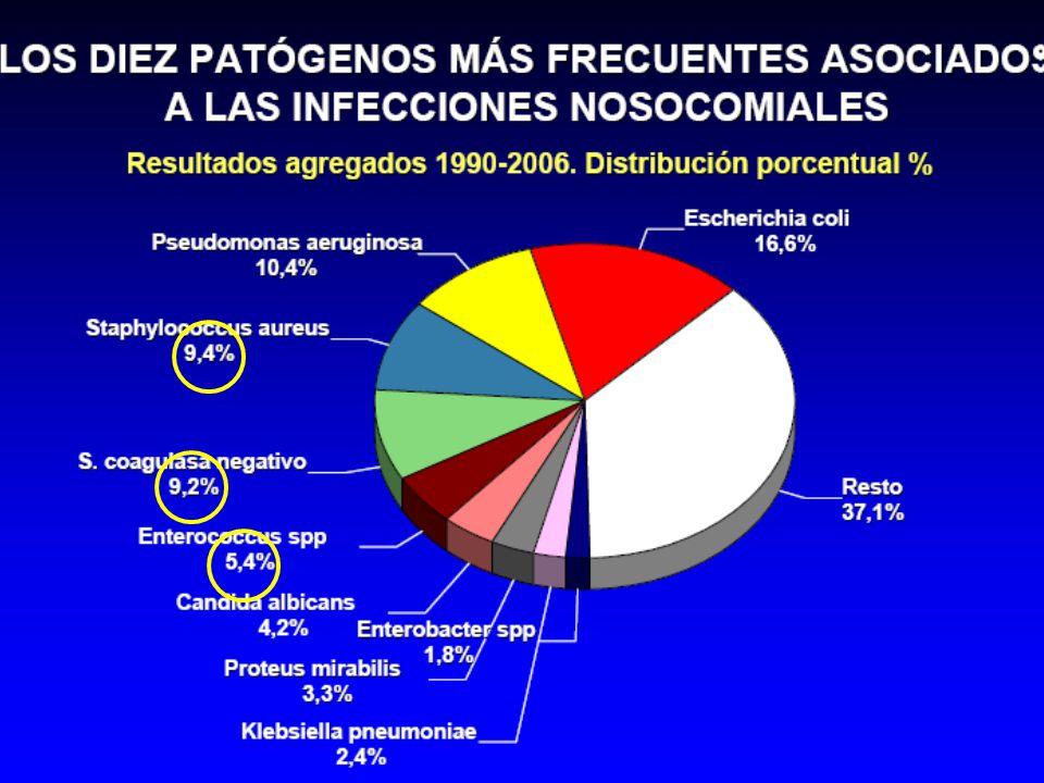 En lo referente a infecciones nosocomiales, según datos de estudio EPINE (evolución de la prevalencia de las infecciones nosocomiales en los hospitales españoles),los cocos grampositivos (que incluye S.aureus, SCN, y Enterococo) suponen el 25% del total de los microoorganismos aislados en infecciones nosocomiales según el estudio EPINE (estudio de prevalencia de las infecciones nosocomiales en España).