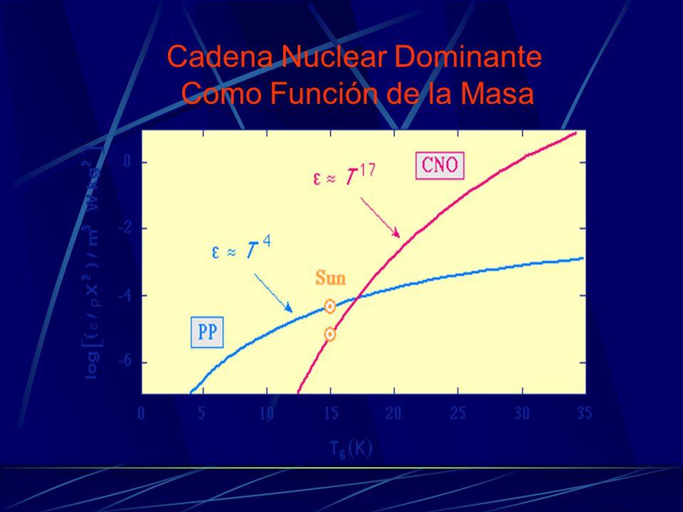 Cadena Nuclear Dominante