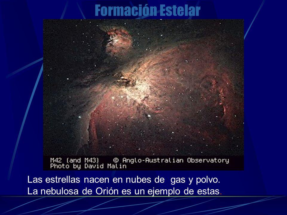 Las estrellas nacen en nubes de gas y polvo.