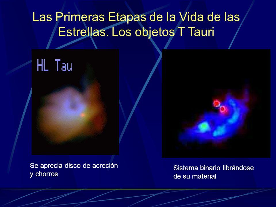 Las Primeras Etapas de la Vida de las Estrellas. Los objetos T Tauri