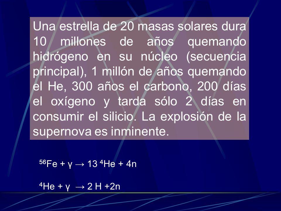 Una estrella de 20 masas solares dura 10 millones de años quemando hidrógeno en su núcleo (secuencia principal), 1 millón de años quemando el He, 300 años el carbono, 200 días el oxígeno y tarda sólo 2 días en consumir el silicio. La explosión de la supernova es inminente.