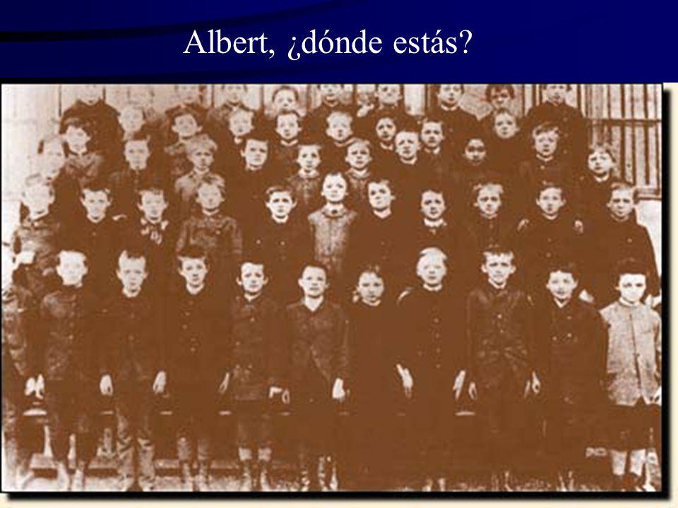 Albert, ¿dónde estás