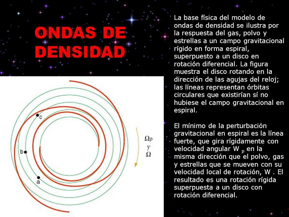 La base física del modelo de ondas de densidad se ilustra por la respuesta del gas, polvo y estrellas a un campo gravitacional rígido en forma espiral, superpuesto a un disco en rotación diferencial. La figura muestra el disco rotando en la dirección de las agujas del reloj; las líneas representan órbitas circulares que existirían sí no hubiese el campo gravitacional en espiral.