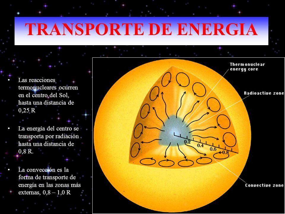 TRANSPORTE DE ENERGIA Las reacciones termonucleares ocurren en el centro del Sol, hasta una distancia de 0,25 R.