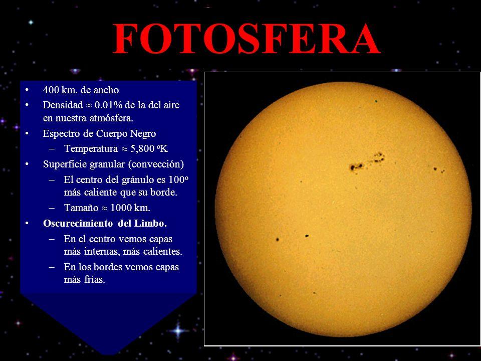 FOTOSFERA 400 km. de ancho. Densidad  0.01% de la del aire en nuestra atmósfera. Espectro de Cuerpo Negro.