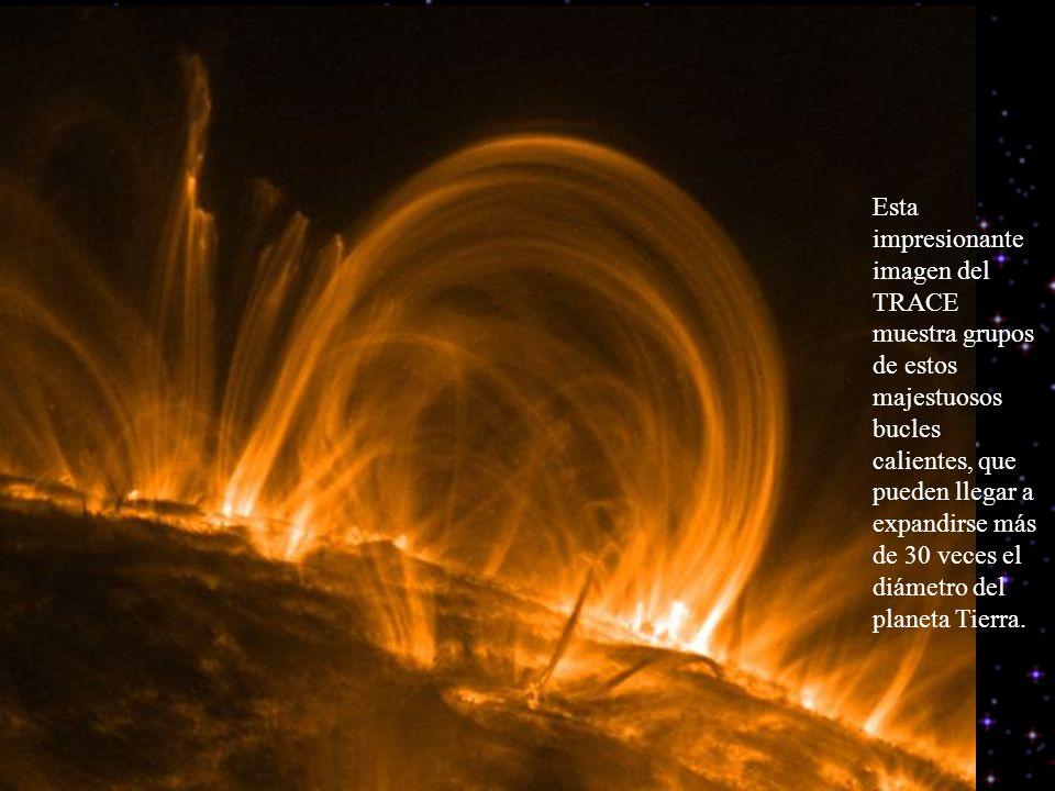 Esta impresionante imagen del TRACE muestra grupos de estos majestuosos bucles calientes, que pueden llegar a expandirse más de 30 veces el diámetro del planeta Tierra.