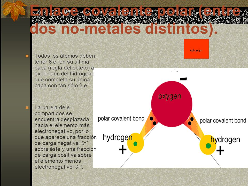Enlace covalente polar (entre dos no-metales distintos).