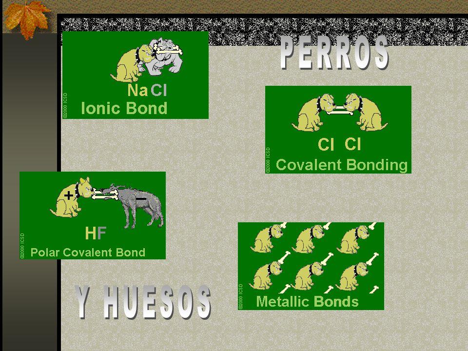 PERROS Y HUESOS