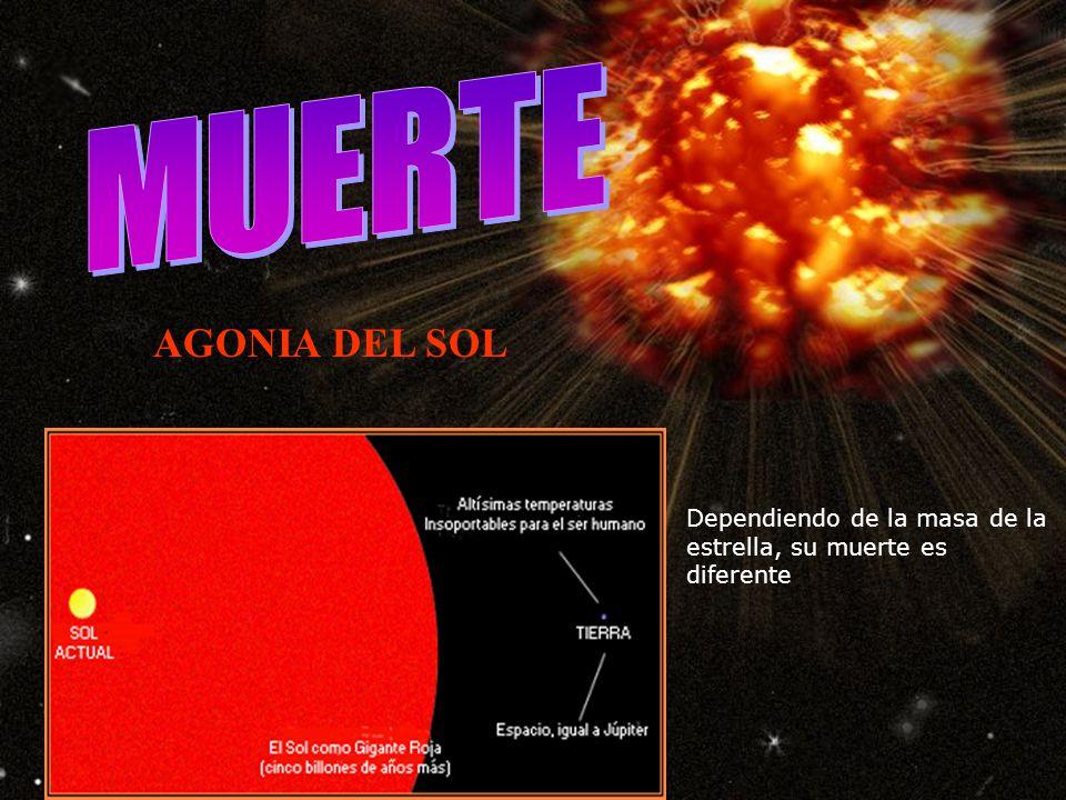 MUERTE AGONIA DEL SOL Dependiendo de la masa de la estrella, su muerte es diferente