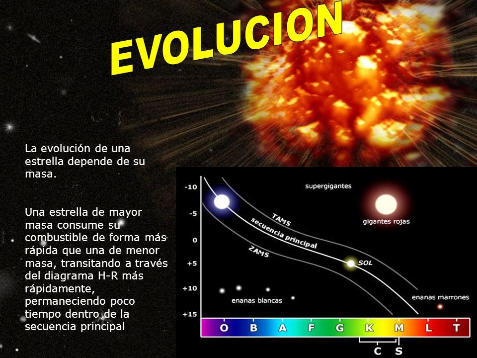 EVOLUCION La evolución de una estrella depende de su masa.