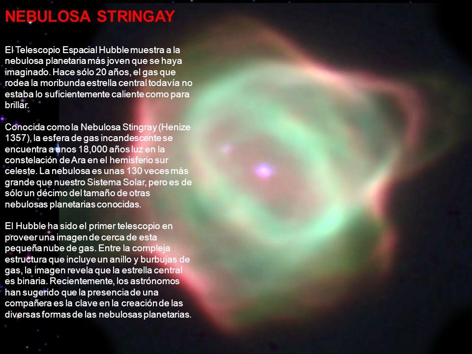 NEBULOSA STRINGAY