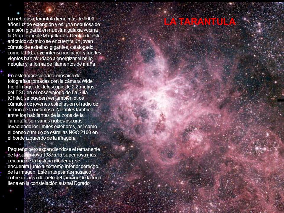 La nebulosa Tarantula tiene más de 1000 años luz de extensión y es una nebulosa de emisión gigante en nuestrra galaxia vecina la Gran nube de Magallanes. Dentro de este arácnido cósmico se encuentra un joven cúmulo de estrellas gigantes, catalogado como R136, cuya intensa radiación y fuertes vientos han ayudado a energizar el brillo nebular y la forma de filamentos de araña. En este impresionante mosaico de fotografías tomadas con la cámara Wide-Field Imager del telescopio de 2.2 metros del ESO en el observatorio de La Silla (Chile), se pueden ver también otros cúmulos de jovenes estrellas en el radio de acción de la nebulosa. Notables también entre los habitantes de la zona de la Tarantula son varias nubes oscuras invadiendo los límites exteriores, así como el denso cúmulo de estrellas NGC 2100 en el borde izquierdo de la imagen. Pequeño pero expandiendose el remanente de la supernova 1987a, la supernova más cercana de la historia moderna, se encuentra junto al extremo inferior derecho de la imagen. Este interesante mosaico cubre un área de cielo del tamaño de la luna llena en la constelación austral Dorado