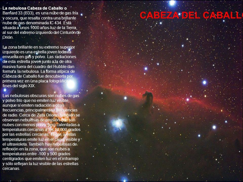 La nebulosa Cabeza de Caballo o Barnard 33 (B33), es una nube de gas fría y oscura, que resalta contra una brillante nube de gas denominada IC 434. Está situada a unos 1000 años-luz de la Tierra, al sur del extremo izquierdo del Cinturón de Orión. La zona brillante en su extremo superior izquierdo es una estrella joven todavía envuelta en gas y polvo. Las radiaciones de esta estrella joven junto a la de otra masiva fuera del cuadro del Hubble dan forma a la nebulosa. La forma atípica de Cabeza de Caballo fue descubierta por primera vez en una placa fotográfica a fines del siglo XIX. Las nebulosas obscuras son nubes de gas y polvo frío que no emiten luz visible, aunque sí emiten radiación a otras frecuencias, principalmente a frecuencias de radio. Cerca de Zeta Orionis también se observan nebulosas de emisión que son nubes con menos polvo, pero calentadas a temperaturas cercanas a los 10,000 grados por las estrellas cercanas. El gas a estas temperaturas emite luz en el canal visible y el ultravioleta. También hay nebulosas de reflexión en la zona, que son nubes a temperaturas entre -100 y 500 grados centígrados que emiten luz en el infrarrojo y sólo reflejan la luz visible de las estrellas cercanas.