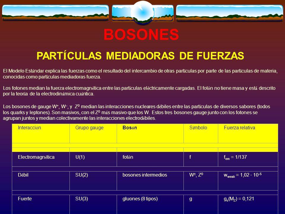 PARTÍCULAS MEDIADORAS DE FUERZAS