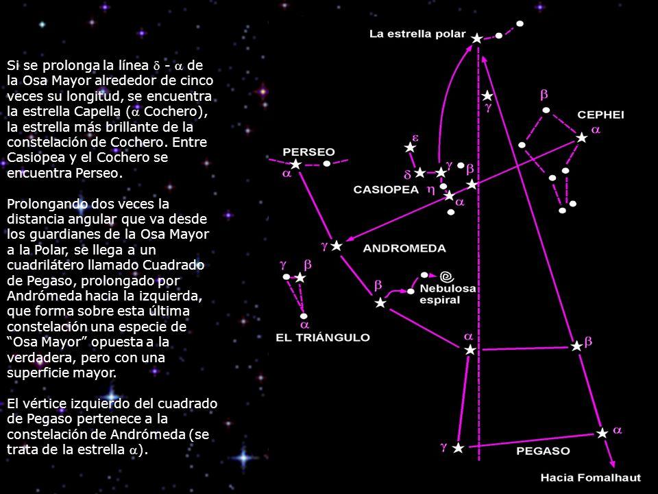 Si se prolonga la línea  -  de la Osa Mayor alrededor de cinco veces su longitud, se encuentra la estrella Capella ( Cochero), la estrella más brillante de la constelación de Cochero. Entre Casiopea y el Cochero se encuentra Perseo.