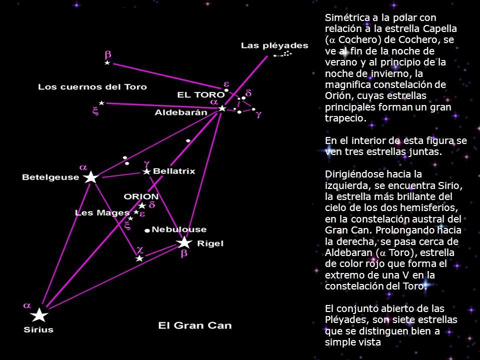 Simétrica a la polar con relación a la estrella Capella ( Cochero) de Cochero, se ve al fin de la noche de verano y al principio de la noche de invierno, la magnifica constelación de Orión, cuyas estrellas principales forman un gran trapecio.