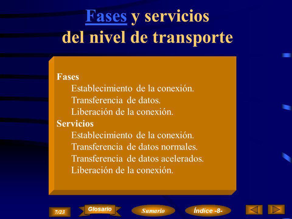 Fases y servicios del nivel de transporte