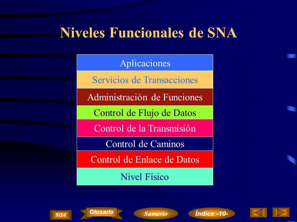 Niveles Funcionales de SNA
