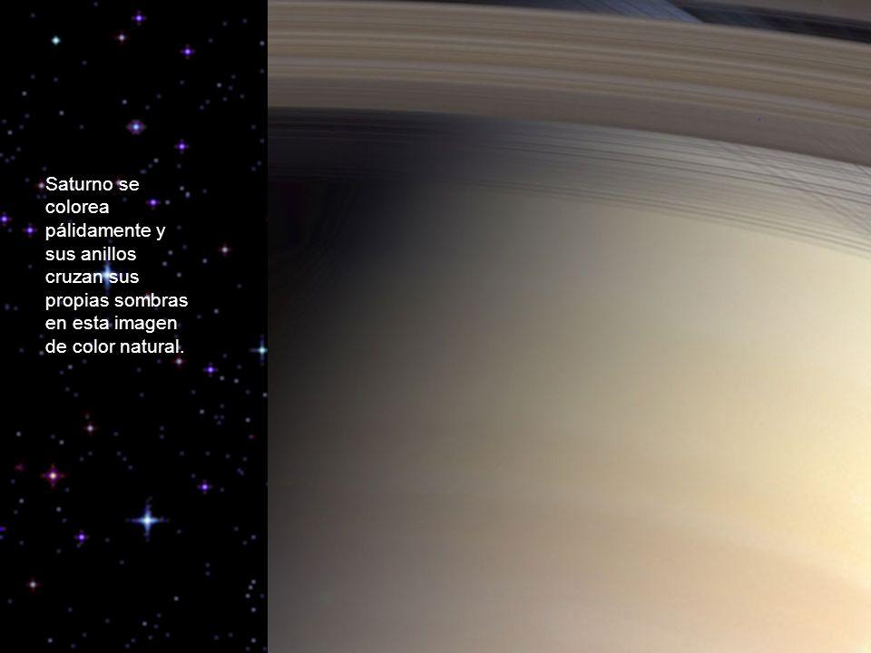 Saturno se colorea pálidamente y sus anillos cruzan sus propias sombras en esta imagen de color natural.