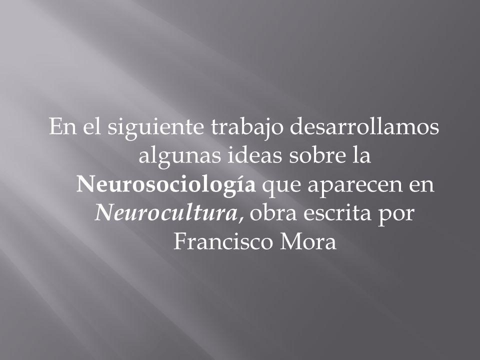 En el siguiente trabajo desarrollamos algunas ideas sobre la Neurosociología que aparecen en Neurocultura, obra escrita por Francisco Mora