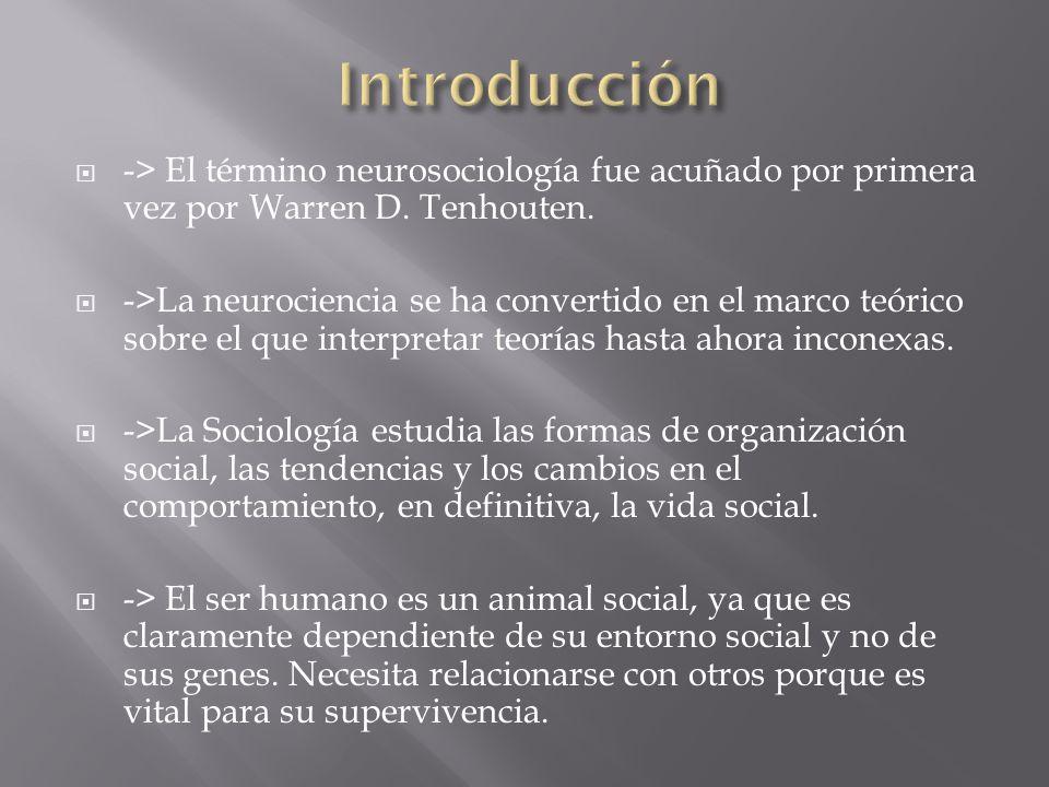 Introducción -> El término neurosociología fue acuñado por primera vez por Warren D. Tenhouten.