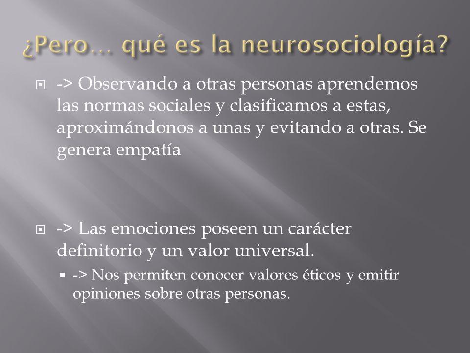 ¿Pero… qué es la neurosociología