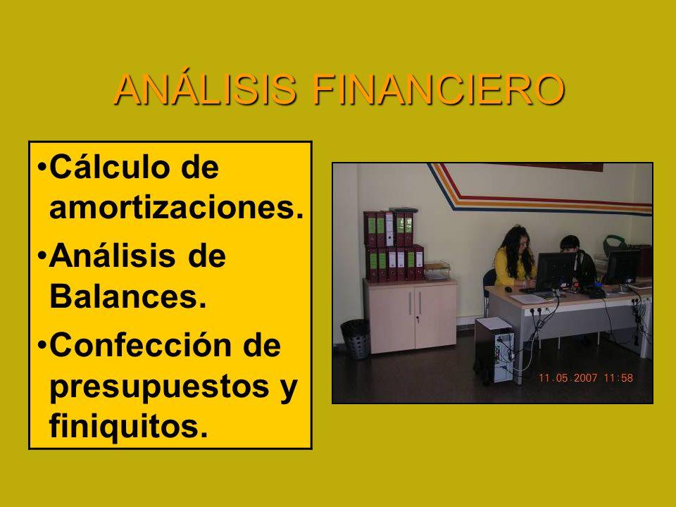 ANÁLISIS FINANCIERO Cálculo de amortizaciones. Análisis de Balances.