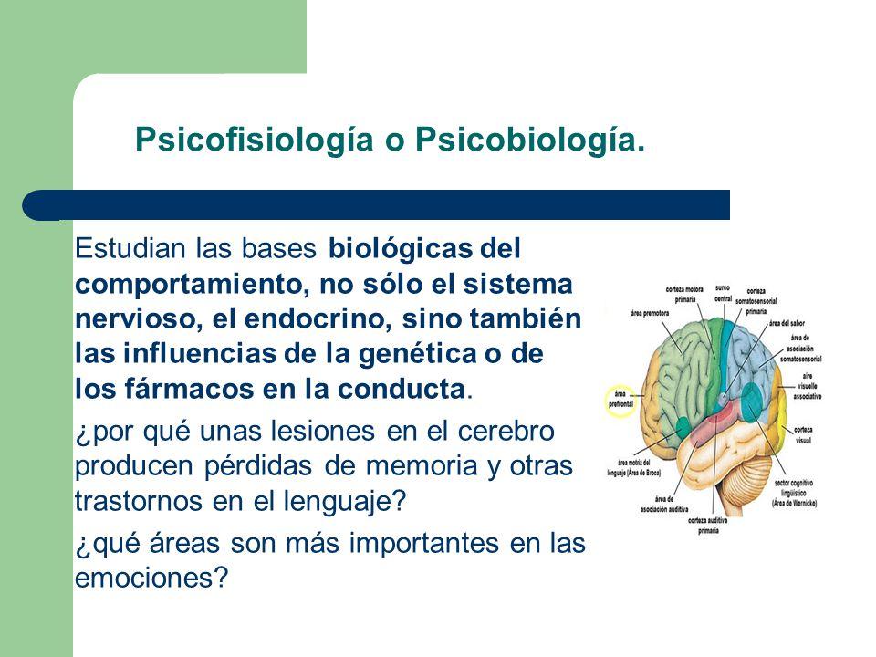 Psicofisiología o Psicobiología.