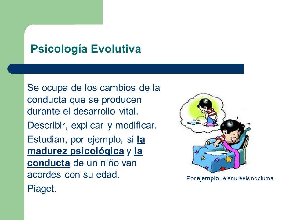 Psicología Evolutiva Se ocupa de los cambios de la conducta que se producen durante el desarrollo vital.