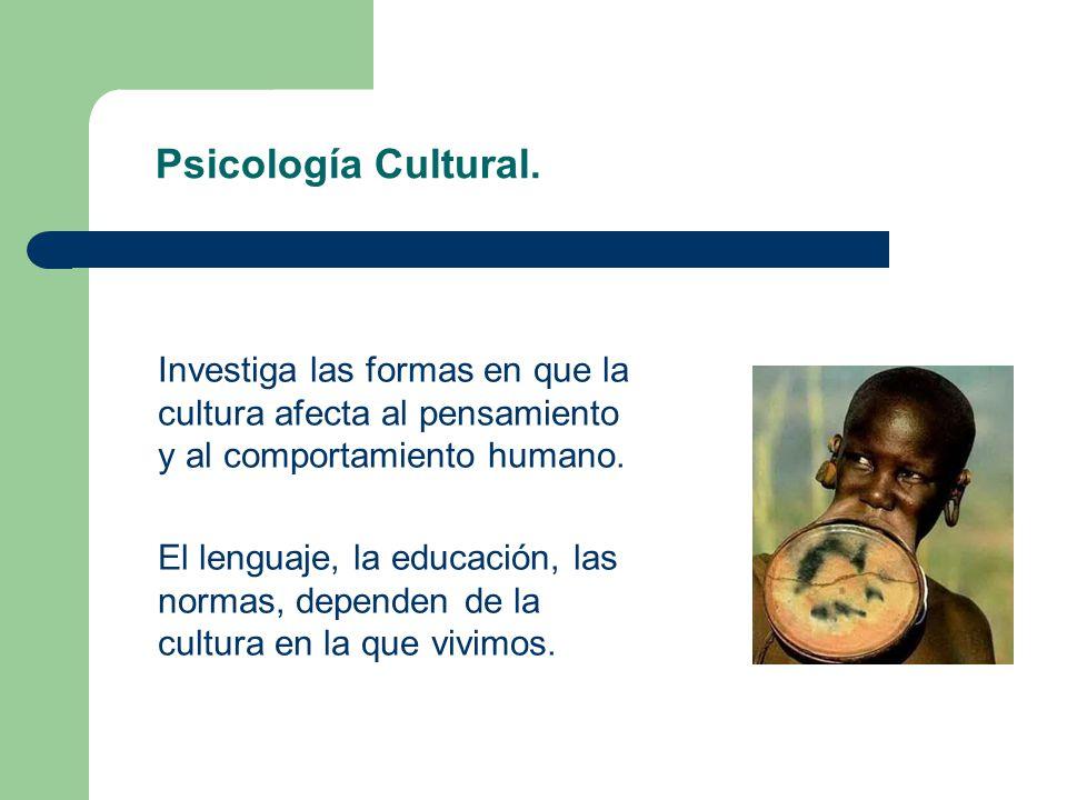 Psicología Cultural. Investiga las formas en que la cultura afecta al pensamiento y al comportamiento humano.
