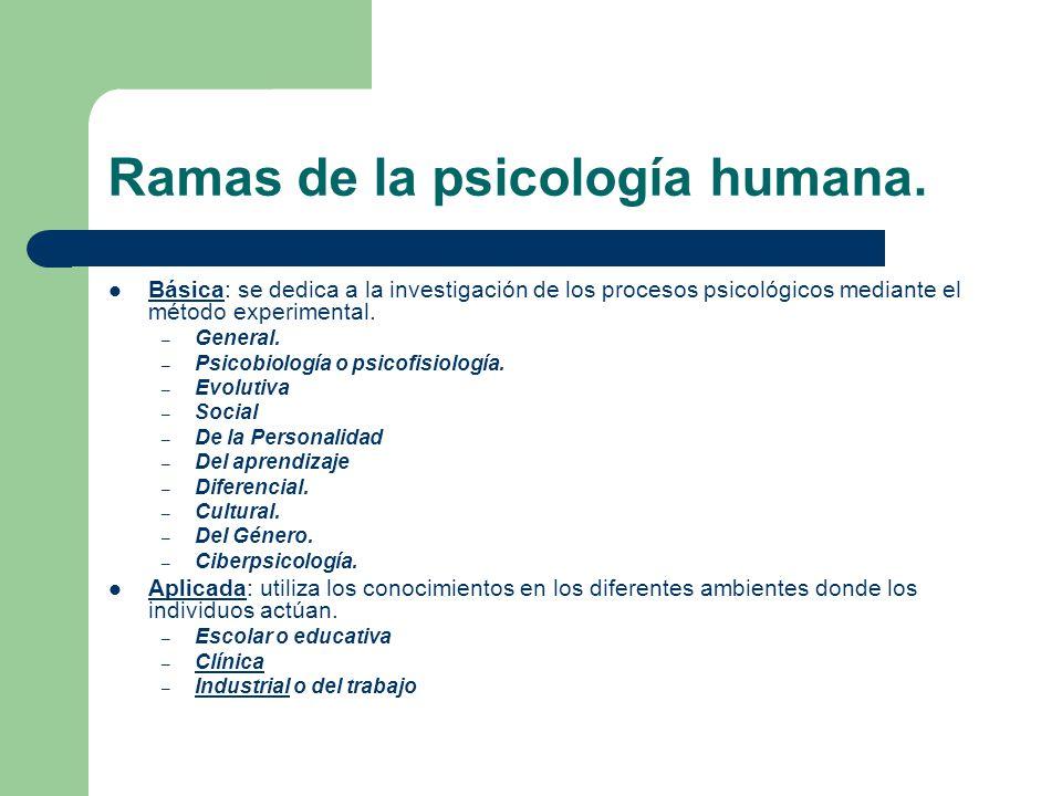 Ramas de la psicología humana.