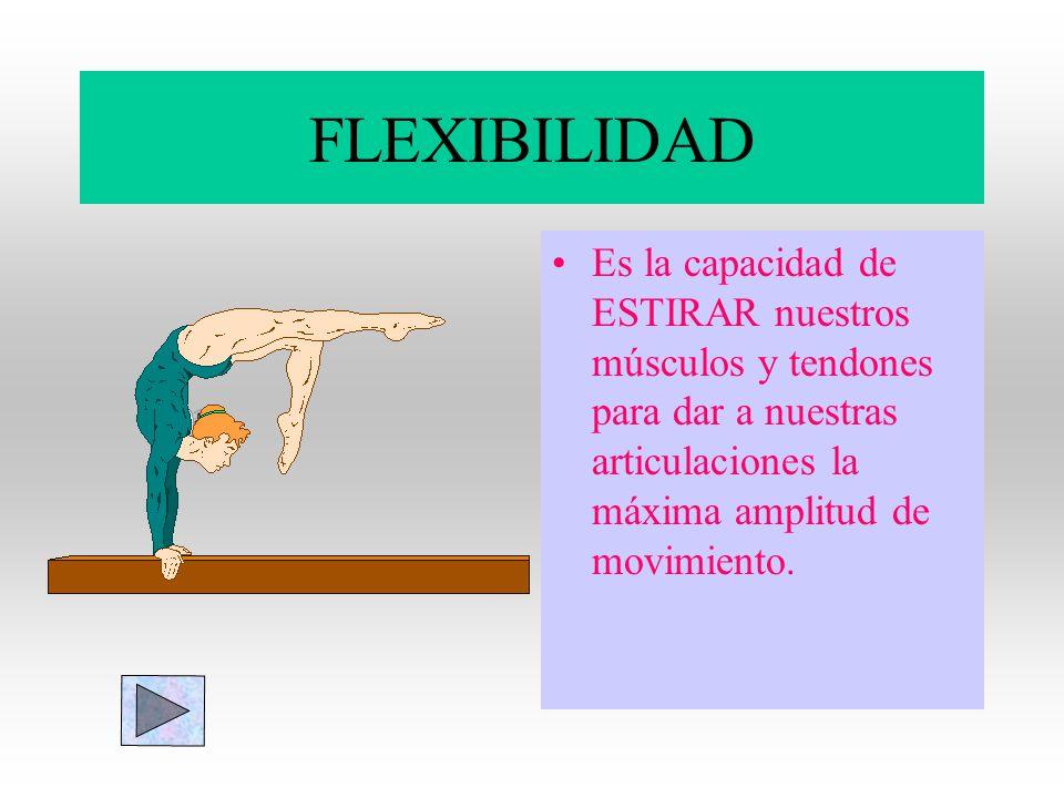 FLEXIBILIDAD Es la capacidad de ESTIRAR nuestros músculos y tendones para dar a nuestras articulaciones la máxima amplitud de movimiento.