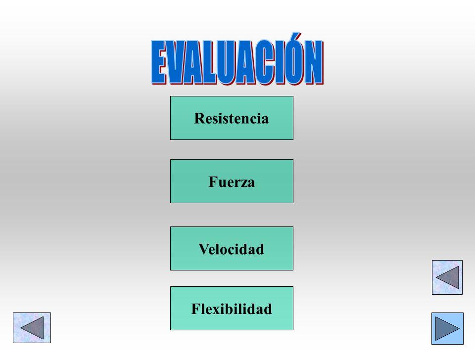 EVALUACIÓN Resistencia Fuerza Velocidad Flexibilidad