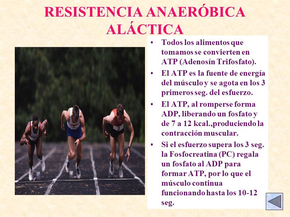 RESISTENCIA ANAERÓBICA ALÁCTICA